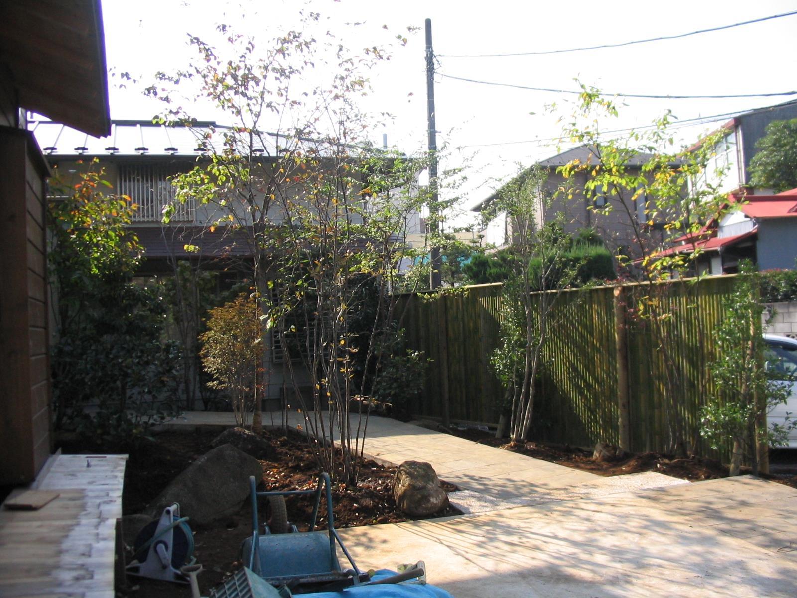 木賊垣の色の変化