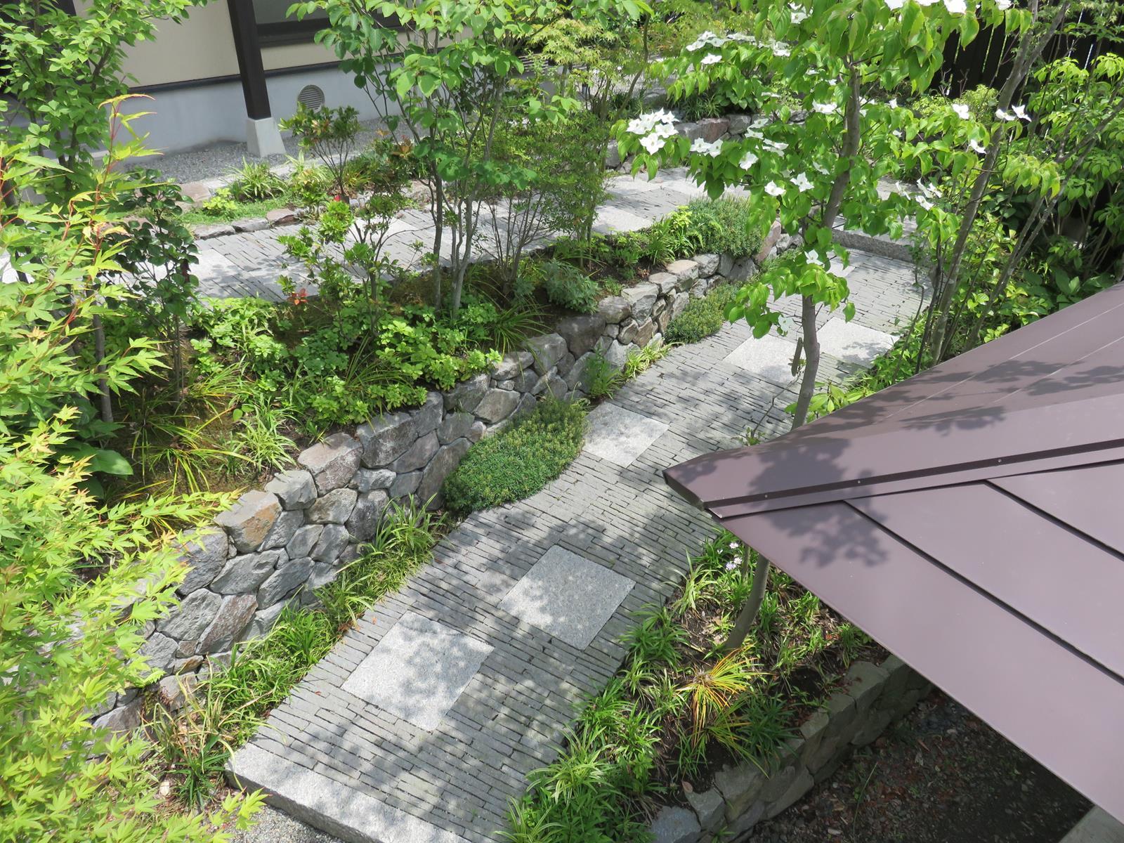 モミジを中心とした雑木を植栽