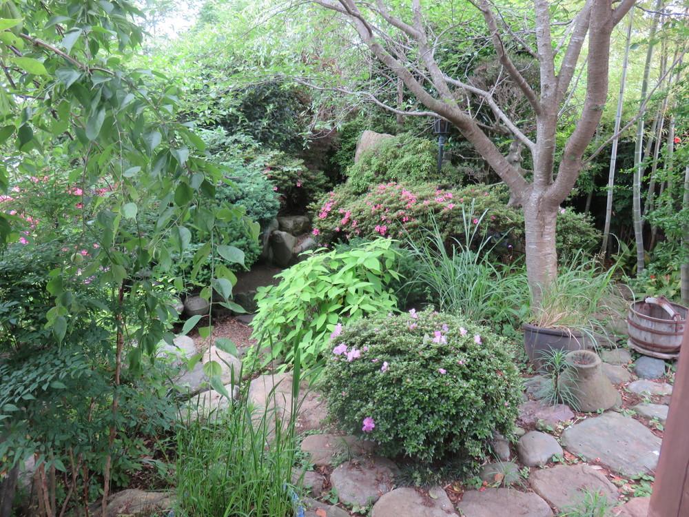 施工前です。鬱蒼としてお庭の全容が掴めませんでした。