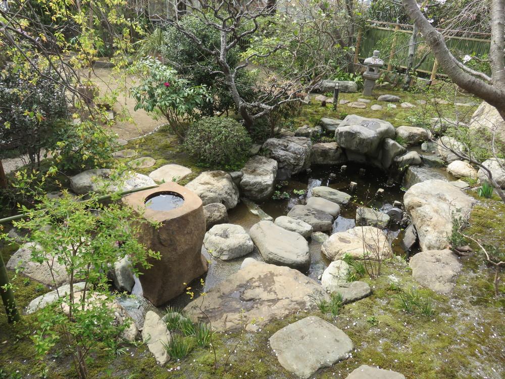 池に一番近い沢飛び石から振り返った景色です。