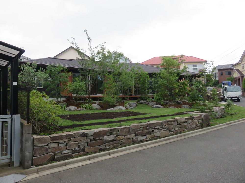 道路に沿って低めに石を積み、芝生に挟まれるように「雑木の山」を庭の中心に作りました。