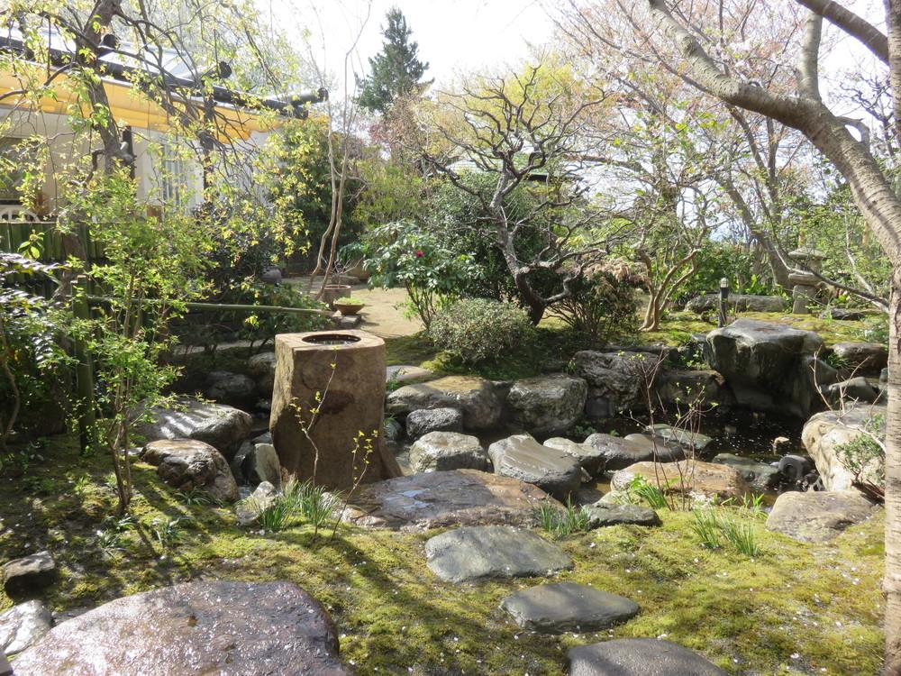 沓脱石から入口を見返ると立手水鉢の先にサルスベリが見えます。